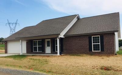 Maryville Single Family Home For Sale: 329 Vista View Way