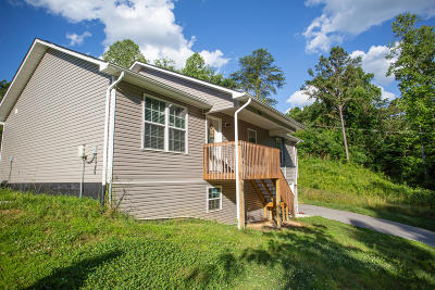Sevierville Single Family Home For Sale: 1268 Tramel Rd