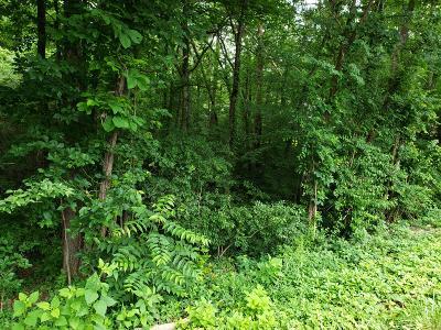 Loudon County Residential Lots & Land For Sale: 115 Daleyuhski Way