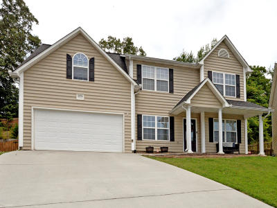 Knoxville Single Family Home For Sale: 6574 Painter Farm Lane