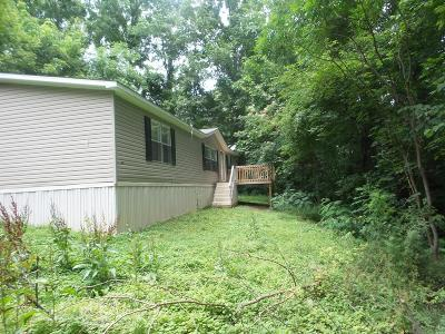 Anderson County, Campbell County, Claiborne County, Grainger County, Union County Single Family Home For Sale: 157 White Lane
