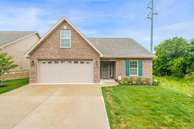 Knoxville Single Family Home For Sale: 5400 Boulder Way
