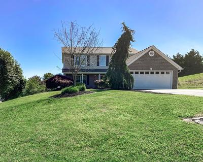 Powell Single Family Home For Sale: 8401 Hounds Run Court