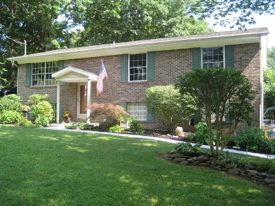 Knoxville Single Family Home For Sale: 5928 Cardan Drive