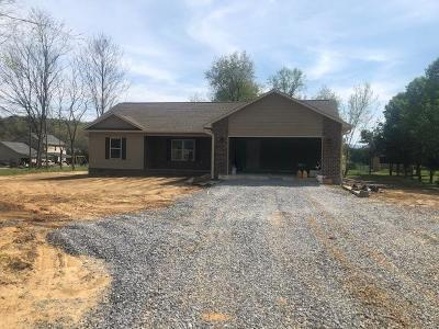 Sevierville Single Family Home For Sale: 1959 River Vista Circle