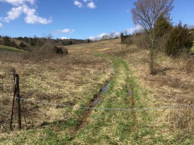 Anderson County, Campbell County, Claiborne County, Grainger County, Hancock County, Hawkins County, Jefferson County, Union County Residential Lots & Land For Sale: Webster Valley Rd
