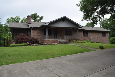 Knoxville Single Family Home For Sale: 1217 E Hendron Chapel Rd