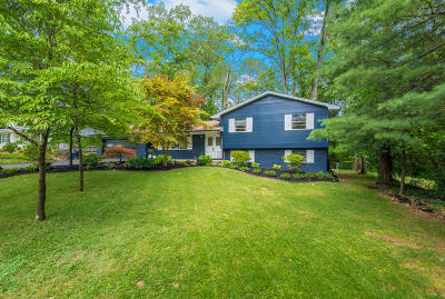 Knoxville Single Family Home For Sale: 1122 Park Hill Circle