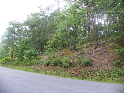 Sevier County Residential Lots & Land For Sale: Lot# Pt28 Dogwood Loop Drive