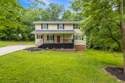 Knoxville Single Family Home For Sale: 3908 Hillbrook Drive