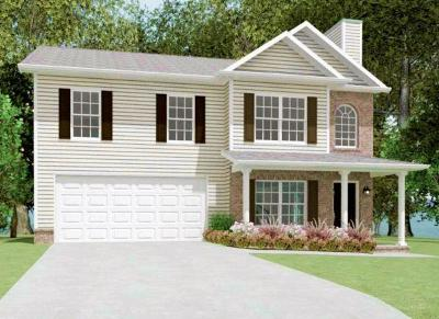 Single Family Home For Sale: 389 Mill Creek Drive