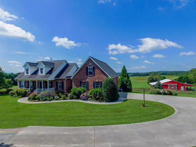 Blount County Single Family Home For Sale: 998 Disco Loop Rd