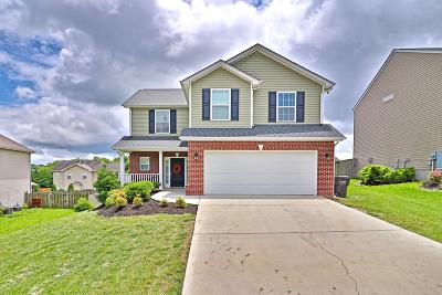 Knoxville Single Family Home For Sale: 6230 Daniels Branch Lane