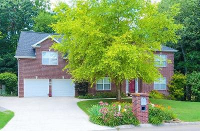 Knoxville Single Family Home For Sale: 12637 Red Canyon Rd