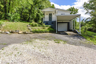 Knoxville Single Family Home For Sale: 4109 Island Home Pike
