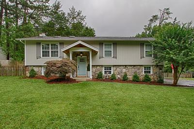 Knoxville Single Family Home For Sale: 6701 Glenbrook Drive