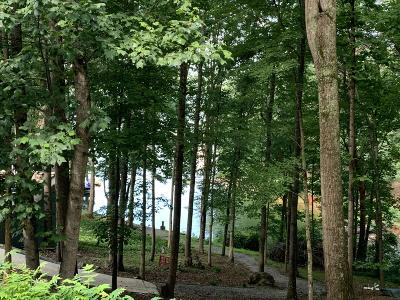 Blount County Residential Lots & Land For Sale: 1103 Wilderness Rd