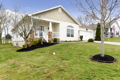 Sevierville Single Family Home For Sale: 1136 Gregory Valley Drive