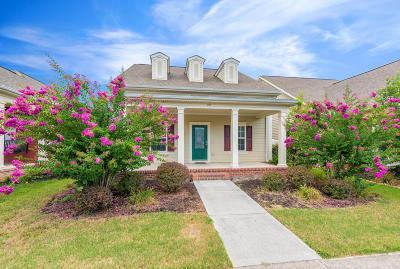 Oak Ridge Single Family Home For Sale: 104 Forestberry St