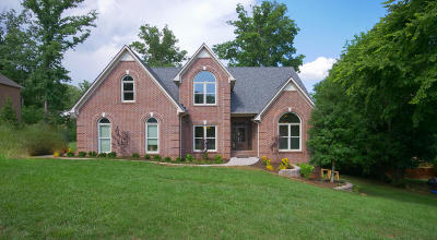 Knoxville Single Family Home For Sale: 10428 Eagles View Drive