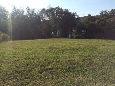 Tennessee National Residential Lots & Land For Sale: 255 River Bank Tr