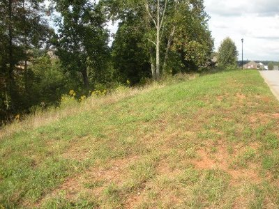 Blount County Residential Lots & Land For Sale: 2335 Monticello Drive