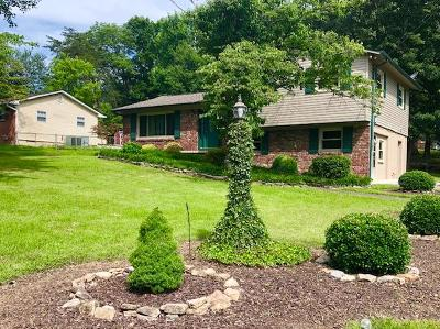 Knoxville Single Family Home For Sale: 4233 Lonor Drive