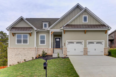 Knoxville Single Family Home For Sale: 2704 Tallgrass Lane (Lot 12)