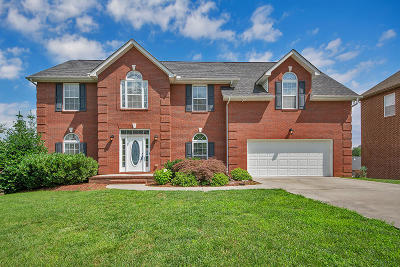 Knoxville Single Family Home For Sale: 8420 Harbor Cove Drive