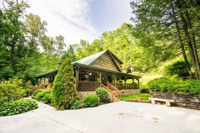Tellico Plains Single Family Home For Sale: 109 Hemlock Rd
