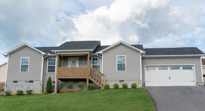 Jefferson City Single Family Home For Sale: 1314 Lauren Drive