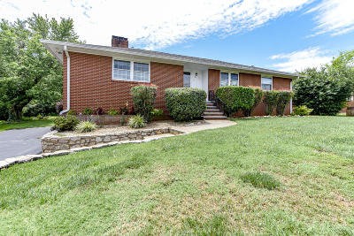 Maryville Single Family Home For Sale: 213 Sandy Springs Rd