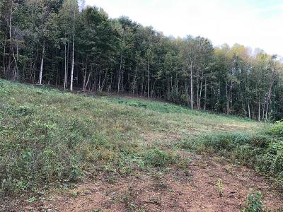 Residential Lots & Land For Sale: 00 Grassy Valley Rd