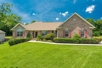 Knoxville Single Family Home For Sale: 7813 Scenic View Dr