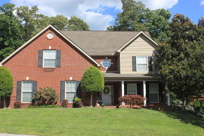 Knoxville Single Family Home For Sale: 10242 Canton Place Lane