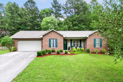 Knoxville Single Family Home For Sale: 4814 Evangeline Lane