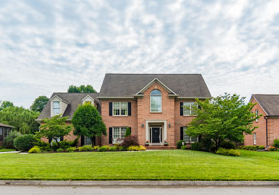 Single Family Home For Sale: 209 Battery Hill Circle