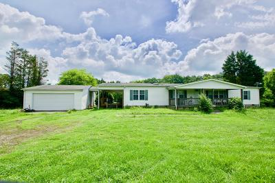 Single Family Home For Sale: 225 Miracle Landing Drive