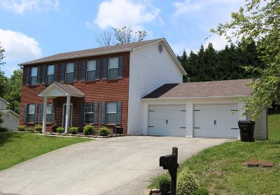 Knox County Single Family Home For Sale: 1011 Janes Meadow Rd