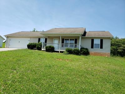 Knox County Single Family Home For Sale: 2833 Diane Gayle Drive Drive