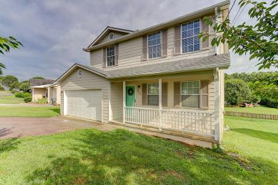 Knoxville Single Family Home For Sale: 7541 Heumsdale Drive