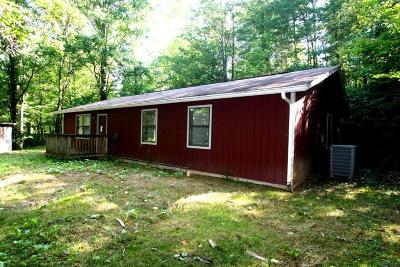 Sevierville Single Family Home For Sale: 3605 Old Mountain Rd