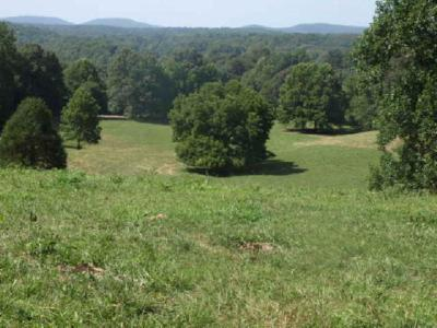Residential Lots & Land For Sale: 62.85ac Old Stone Rd