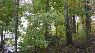 Residential Lots & Land For Sale: Old Rockwood Hwy
