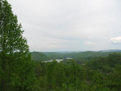 Lone Mountain Shores Residential Lots & Land For Sale: Chimney Rock 115 Rd