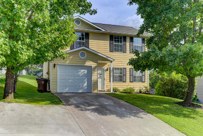 Knoxville Single Family Home For Sale: 2345 Wadsworth Drive