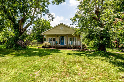 Knoxville Single Family Home For Sale: 1002 E Hendron Chapel Rd