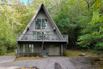 Blount County Single Family Home For Sale: 313 Domar Drive