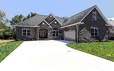 Blount County Single Family Home For Sale: 620 Disco Loop Rd