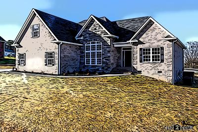 Blount County Single Family Home For Sale: 616 Disco Loop Rd